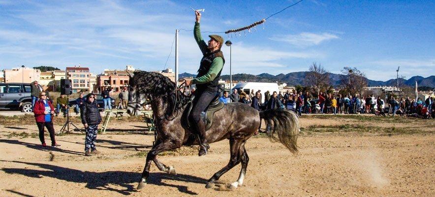 Una docena de caballistas participa en la Carrera de Cintas de San Antón