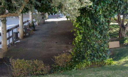 Vecinos de Los Musoles se quejan por la presencia de ratas en el parque