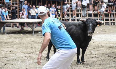PSPV provincial expone en una moción que los toros no pertenecen a los políticos