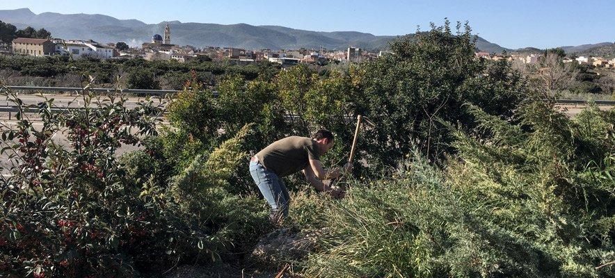 La Asociación El Cantal de Altura arregla la zona del Batán
