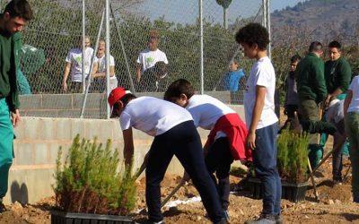 Escolares de Segorbe y Soneja hacen plantaciones de árboles