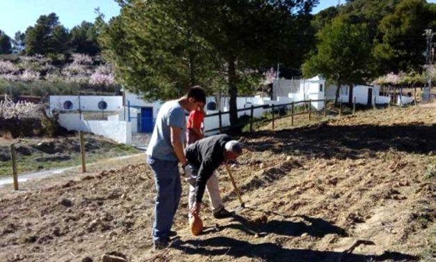 Altura recupera el parque de Las Fontanicas en el Día del Árbol