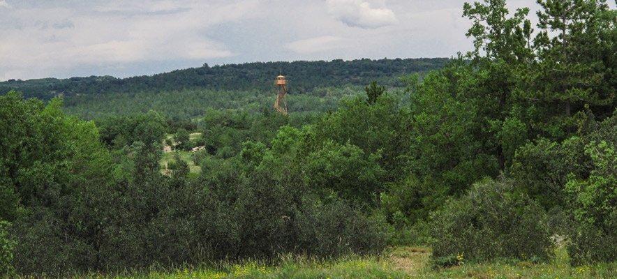 Agricultura licita un proyecto millonario para la Sierra de El Toro