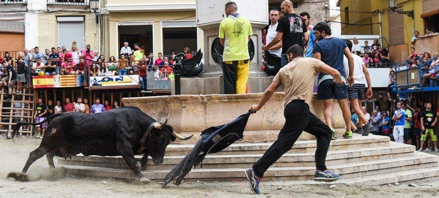 La Comisión de Toros de Segorbe celebra una jornada para voluntarios taurinos