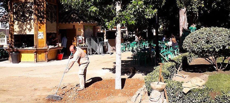 Plantan un árbol caducifolio en la Glorieta de Segorbe