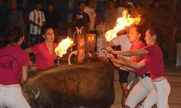 Novedades en los festejos taurinos de Castellnovo