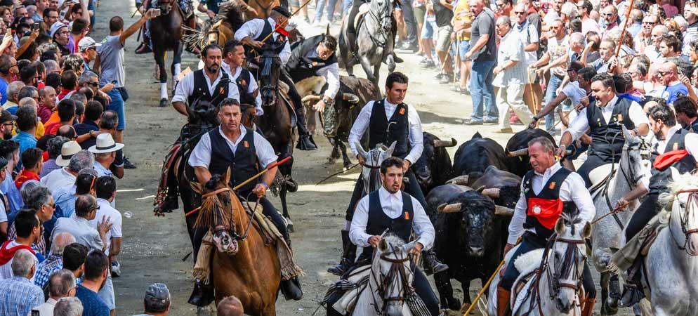 Un jinete descabalgado y un caballo herido en la primera Entrada de Segorbe