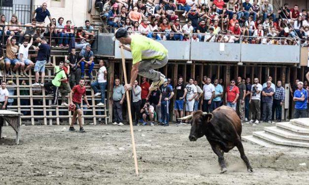 Fernando Machancoses acaparó premios en la Semana de toros de Segorbe