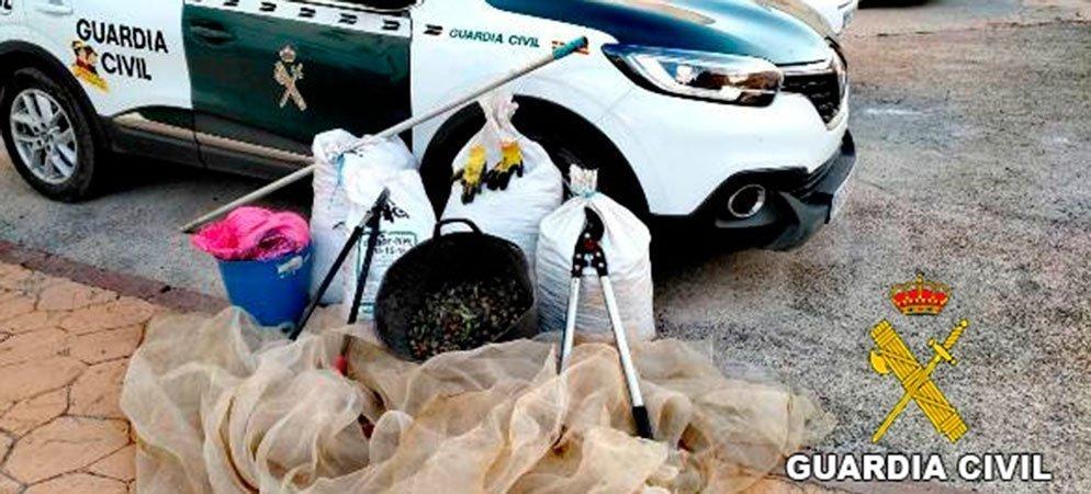 Detenidos por robar almendras en Segorbe y Castellnovo