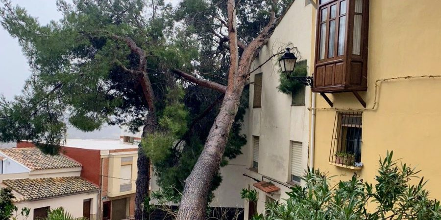 La lluvia y el viento provocan numerosos daños en Segorbe