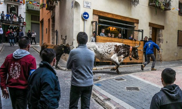 Segorbe acaba las fiestas de San Antón con toros y paellas