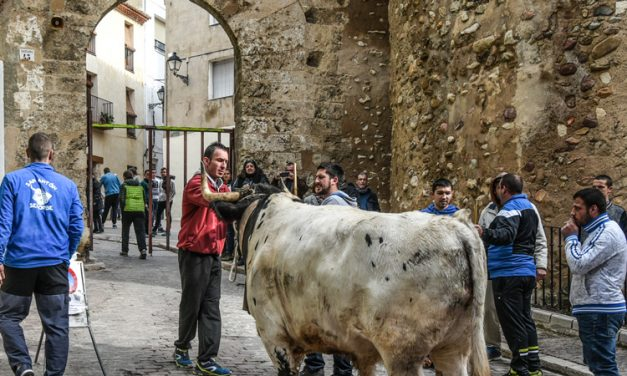 Segorbe aplaza los toros y mantiene el resto de actos de San Antón