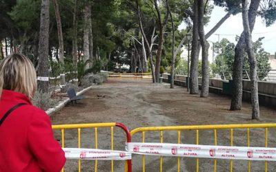 Altura pide ayuda para intervenir en los pinos de la Glorieta