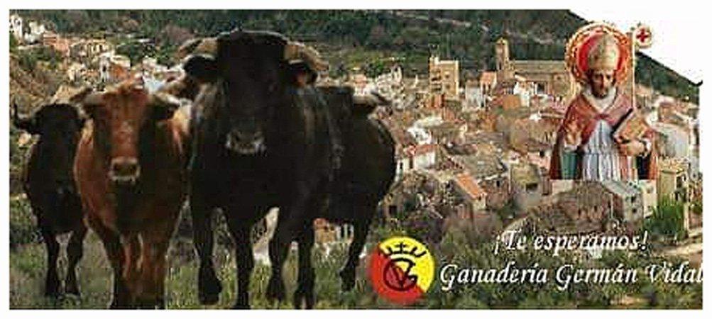 Almedíjar celebra San Blas con toros y vacas