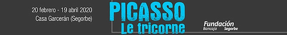 PICASSO FUNDACION