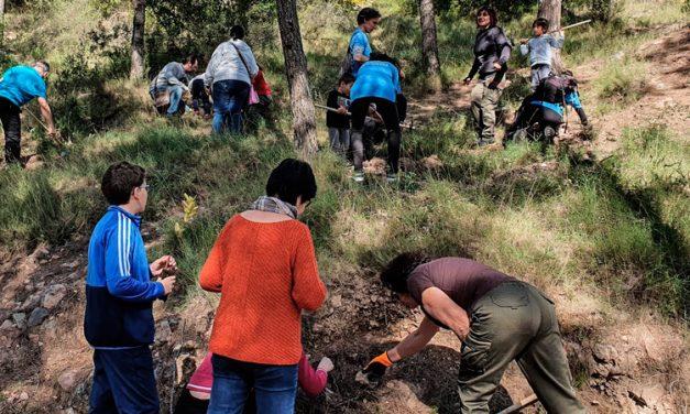 Vall de Almonacid celebra el Día del Árbol en el monte del Lentisco