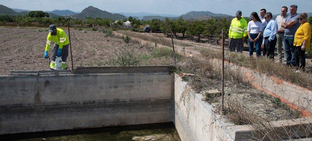 Diputación detalla «dónde, cuándo y cómo actuar» contra los mosquitos