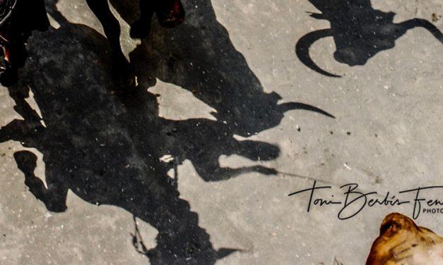 «El pañuelico de hierbas» por Toni Berbís