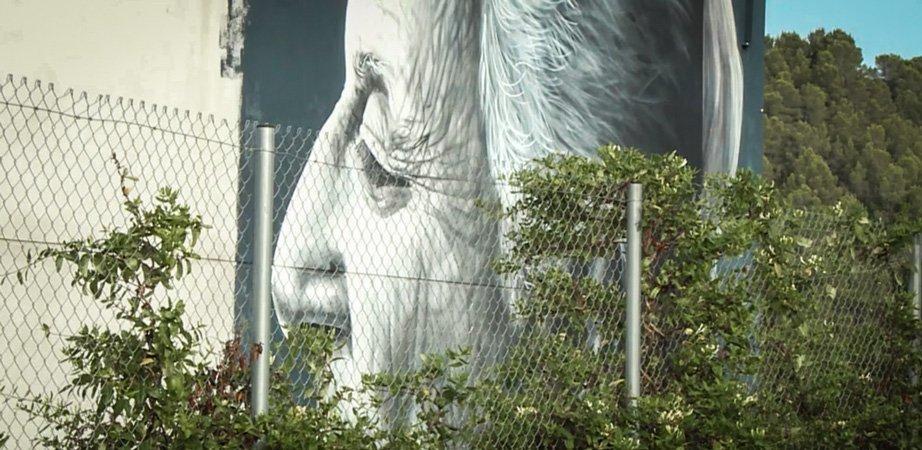 Los murales de Geldo son recogidos en un plano