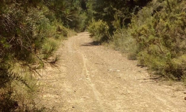 Segorbe arregla 5 caminos agrícolas con ayuda de la Diputación