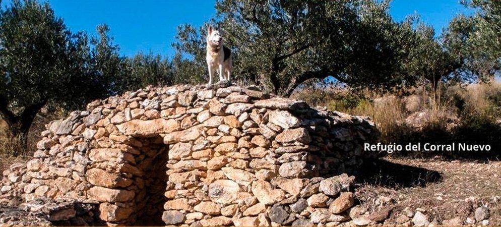 El Cantal y el PN Sierra Calderona organizan una excursión guiada