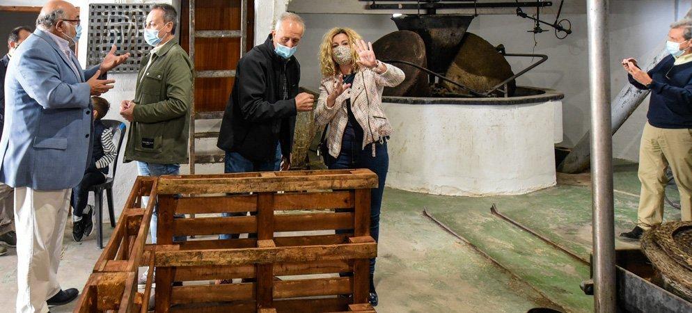 Altura sigue apostando con fuerza por el aceite de oliva