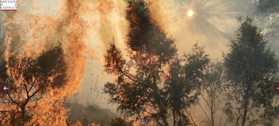 Grave incendio forestal en Bejís