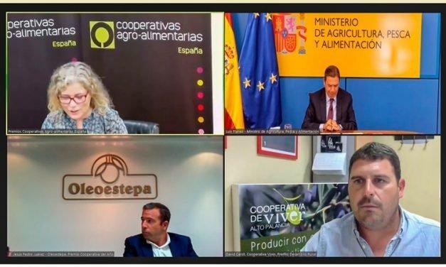 La Cooperativa de Viver obtiene el Premio a la Mejor Cooperativa de España