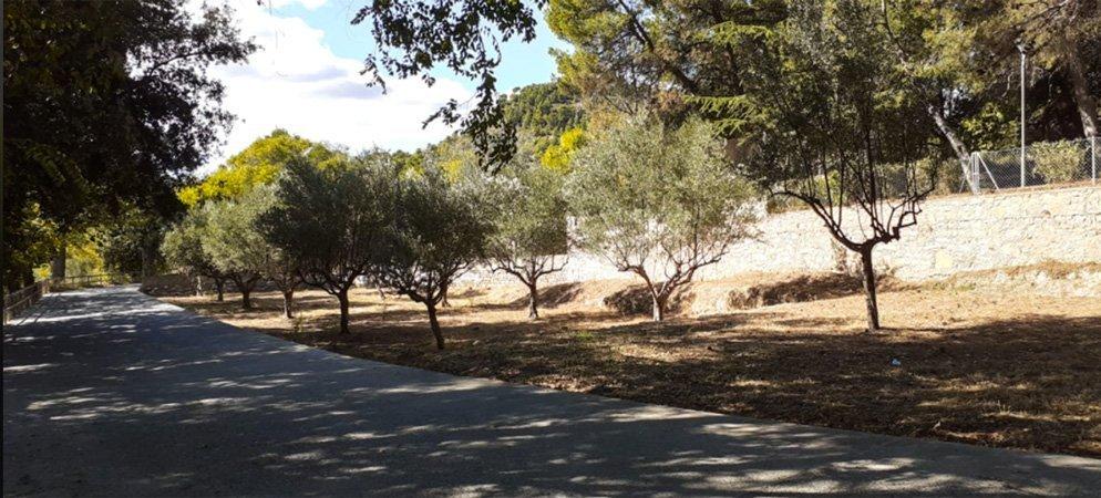 Altura compra terrenos junto a la Vía Verde