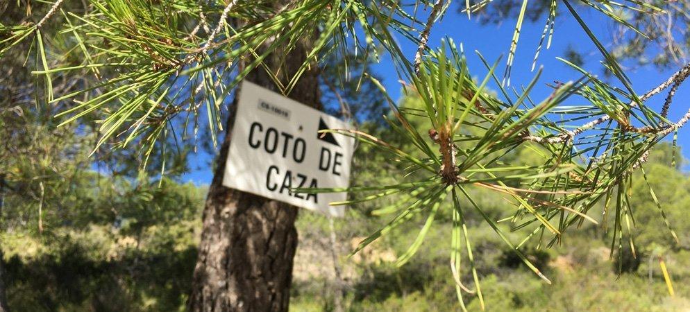 Diputación reparte más 94.000 € entre 75 clubs de caza