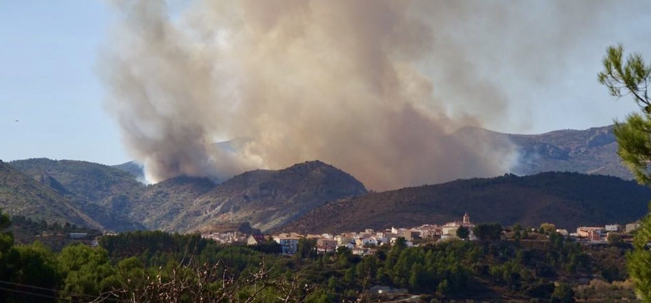 El incendio de Bejís calcina más de 80 hectáreas de bosque