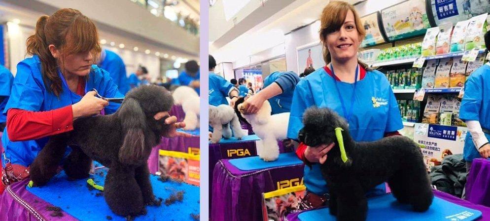 La joven castellnovera Rosi vuelve a ganar un concurso canino en China