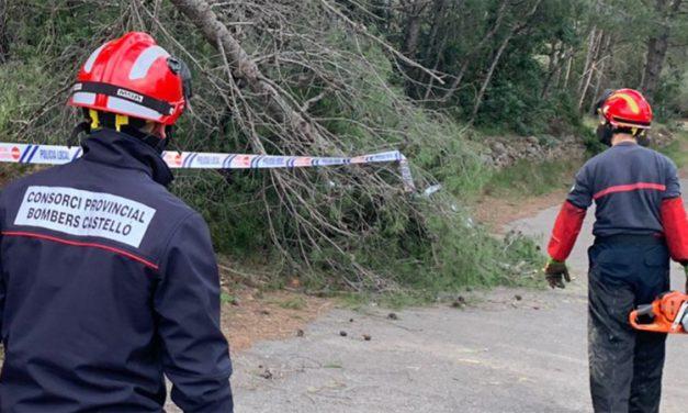 Los bomberos retiran árboles caídos en Segorbe y Altura