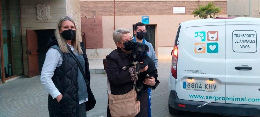 Segorbe concede las primeras ayudas por adopción de animales