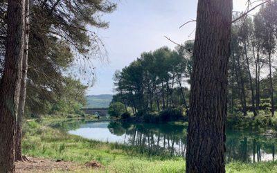 Altura abre en la comarca la oferta juvenil del verano con una excursión en kayak