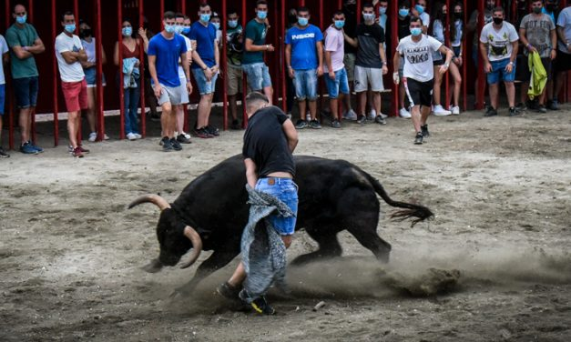 La Paloma consigue el Premio a la Mejor Tarde de Vacas